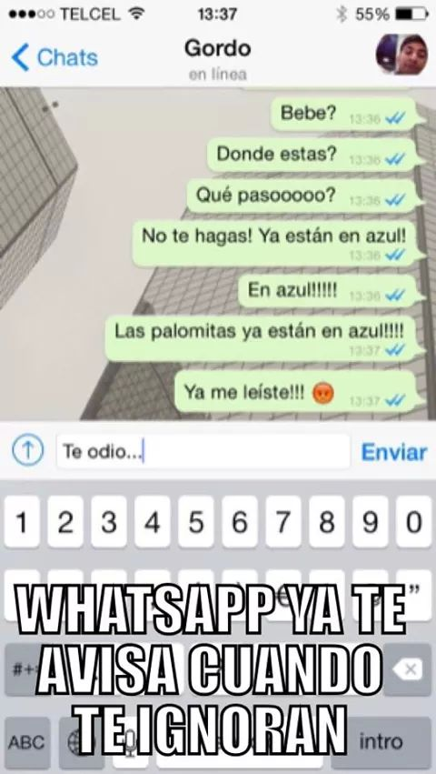 Doble check azul Whatsapp